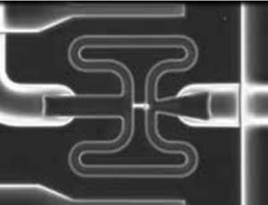 The Fluidigm C1 single cell microfluidic chamber showing a capture