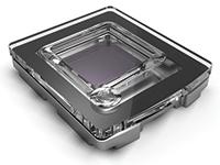 QuantStudio 3D Chip
